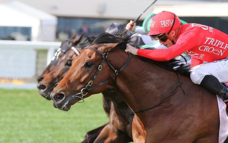 Brave Song ready to soar at Eagle Farm