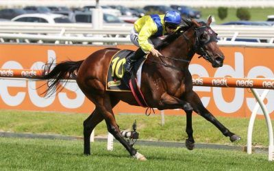Anaheed on target for the G1 Oakleigh Plate