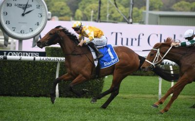 Dame Giselle's Yes Yes Yes Stakes fate rests on weather