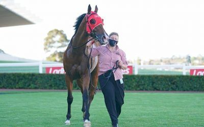Missile Mantra rockets to Group 3 victory