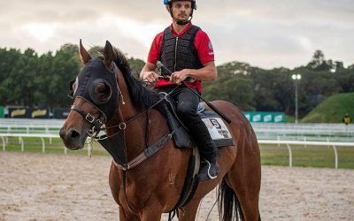 Getting To Know Trackwork Rider, Raphael Desanti