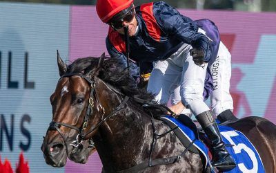 I Am Superman Books His Ticket for the Doncaster Mile