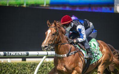 Drisana impresses in the Sydney 2YO Trials