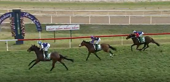 Fine Ruby salutes at Hawkesbury