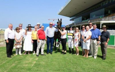 Race with mates or family! Own a racehorse …cheaper than you think!!