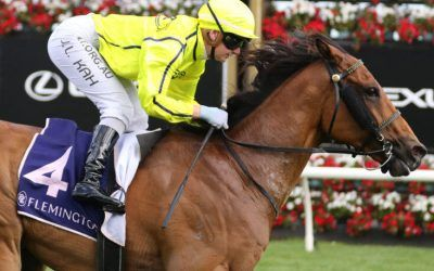 Suspect to get Sirius in the Aurie's Star Handicap