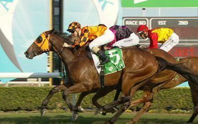 Cruze toughs out win on the Gold Coast