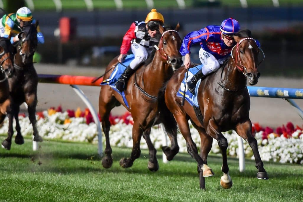 Tassie Racing ceases for a month