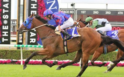Roll the Dice Racing Strike again at Magic Millions