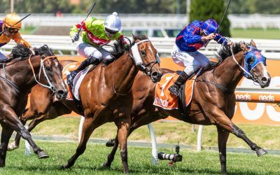 Roll The Dice Racing gets another stakes winner at Caulfield on Blue Diamond Day