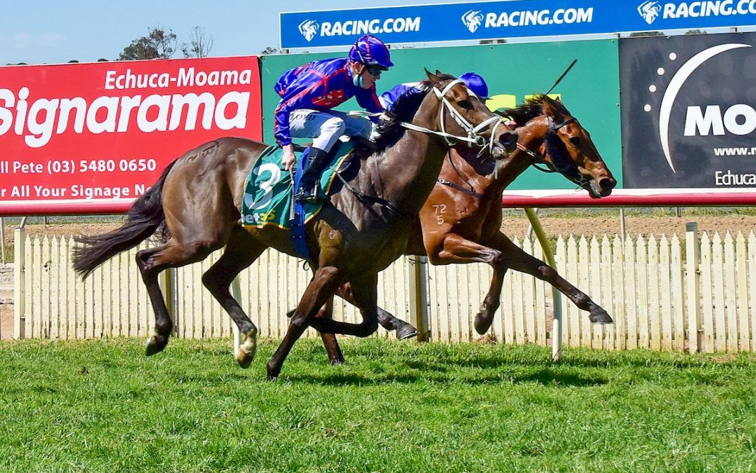 Mount Madeira gets the job done at Echuca