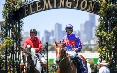 Profiteer shows his class at Flemington