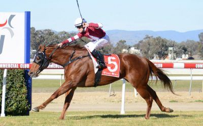 Dale finds key to French Politician | Andrew Dale Racing