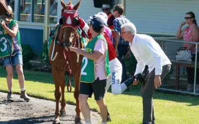 Veteran campaigner given time frame to regain best form | The Border Mail