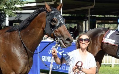 Albury preview | Andrew Dale Racing