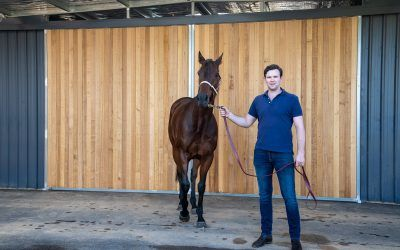 Stable profile: Frazer Dale