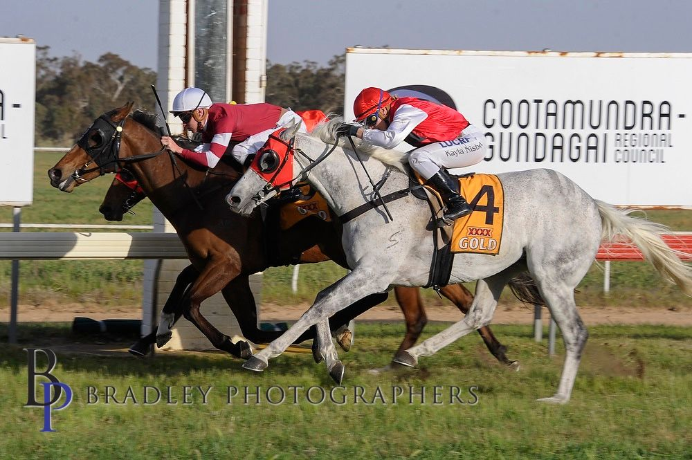 Parliament wins Cootamundra Cup