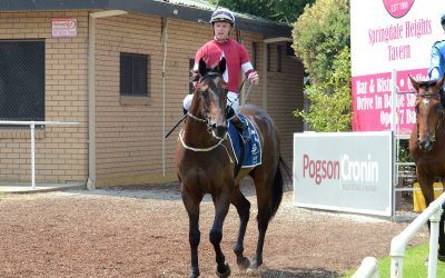 Suburbia finds form at Albury to score maiden win