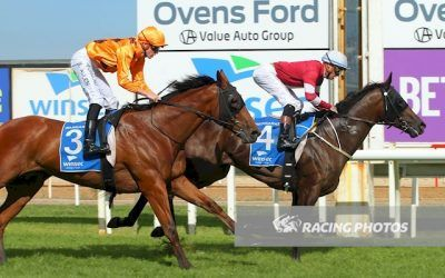 Suburbia wins on Wangaratta Cup Day