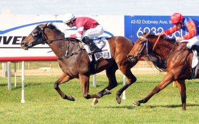 Parliament proves a class above rivals at Wagga