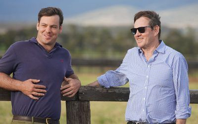 2020 Scone Yearling Sale Preview