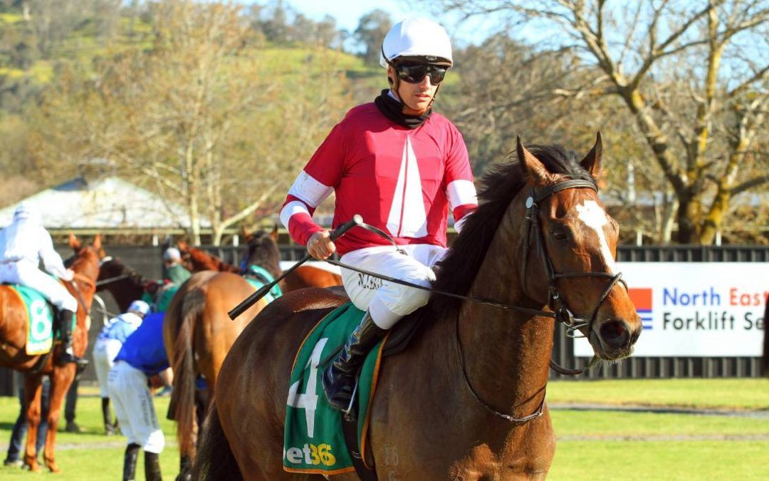 Stable cheers Billy's steer after longshot victory at Wodonga