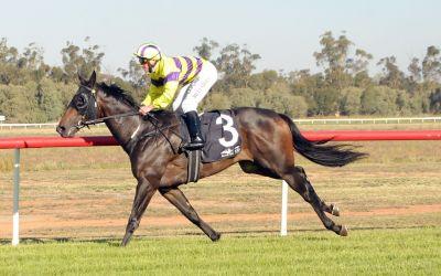 Namarari leads all the way in Leeton Cup