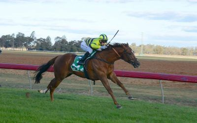 Treble for Dale stable at Deniliquin