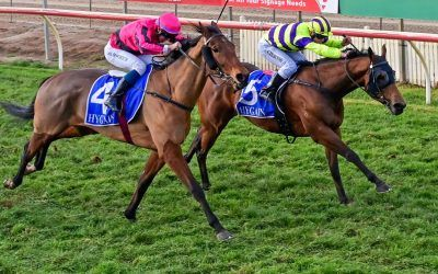 Submission relishes heavy track to score at Echuca