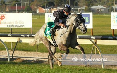 Chairman's Choice on the quick back-up at Wangaratta