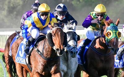 Stable keen to raise the bar with grey sprinter