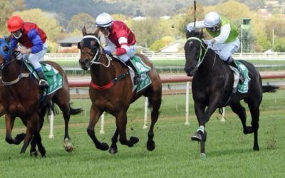 Fromista set to chase hat-trick of wins