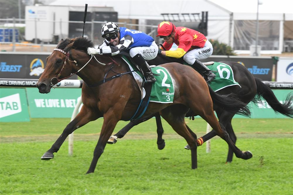 Big Duke, Sixties Groove to run in Grafton Cup