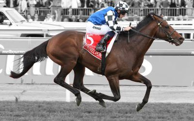 Bright start for Melbourne Cup winner