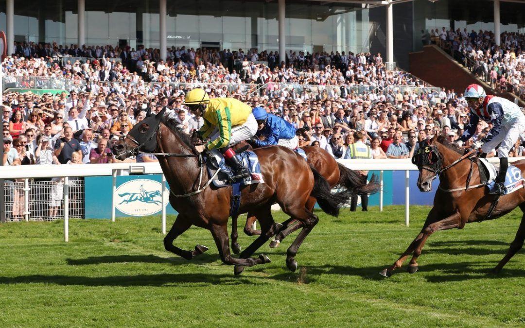 A million reasons to cheer as Mustajeer lands Ebor jackpot for Australian Bloodstock