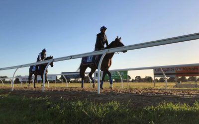Danceteria in great shape for Cox Plate tilt, says Menuisier