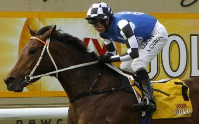 Melbourne Cup: Mustajeer impresses in Sandown trackwork
