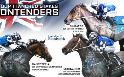 Imported stablemates to clash in G1 Tancred Stakes