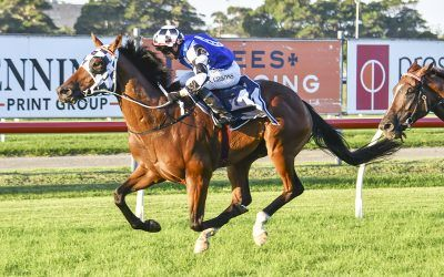 Andrew Gibbons celebrates big day in style with win on Animate