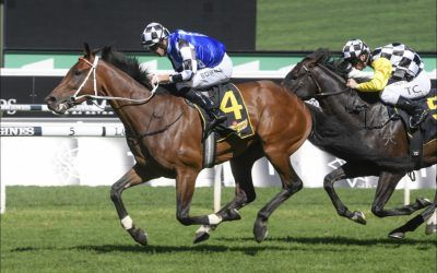 Raheen House stamps himself on the Sydney Cup