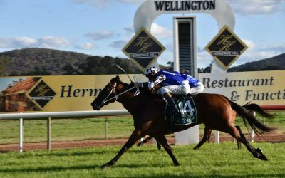 Zeftabrook storms home to secure 2020 Wellington Boot