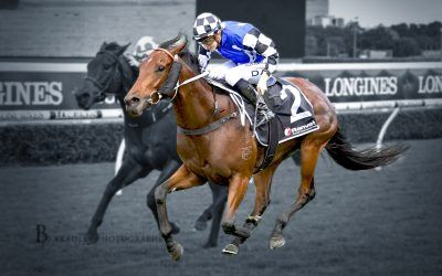 Wandabaa out to break run of stakes placings in Civic Stakes!