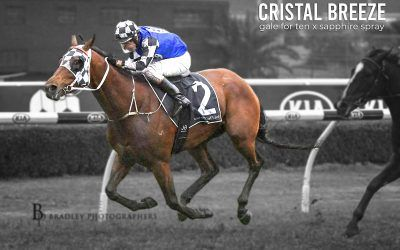 Cristal Breeze – Jun 10, 2020 – Canterbury Park