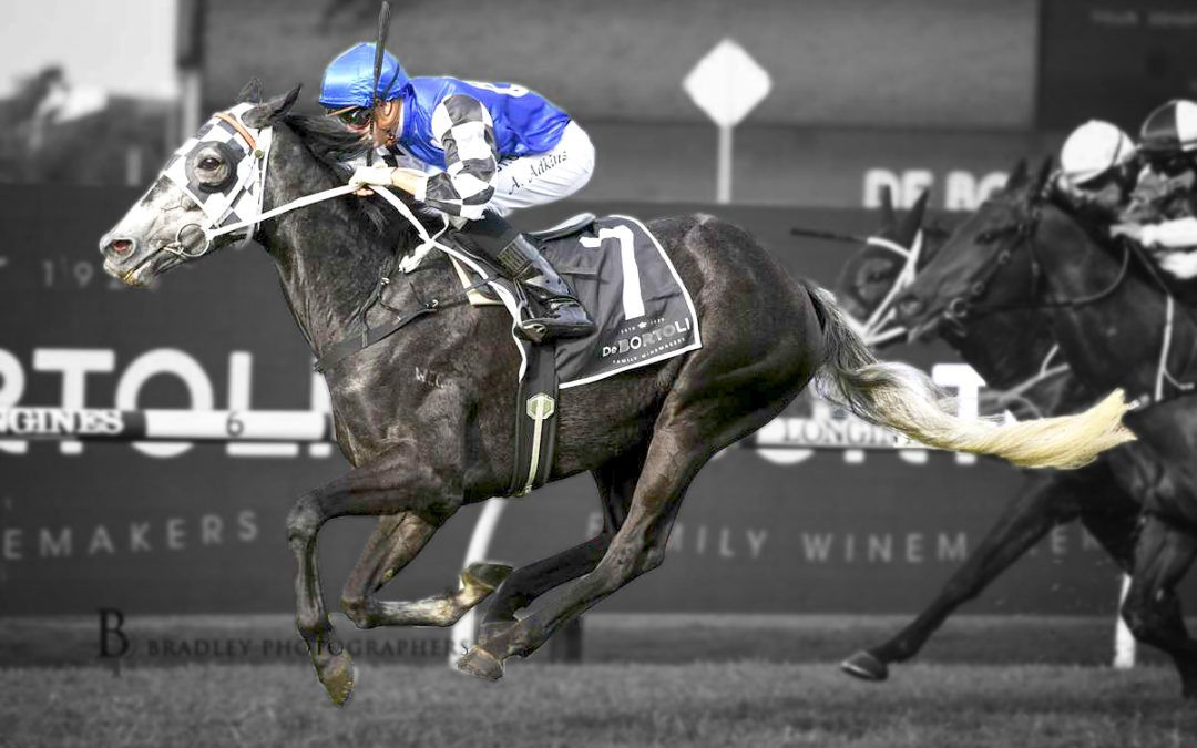 Attention Run earns shot at winter Cups