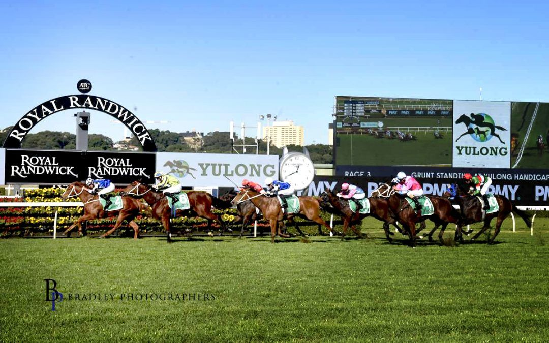 Witherspoon improves broodmare value to lead in city first for Kris Lees