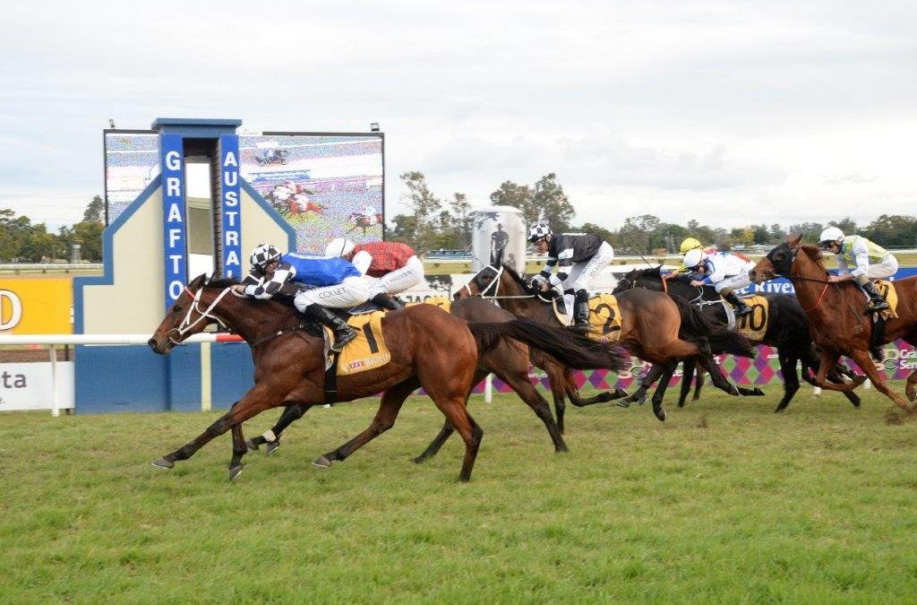 Kris Lees-trained Sixties Groove becomes highest weight-carrying winner of Grafton Cup since 1934