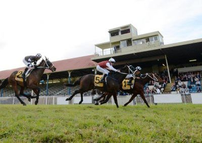 Sixties Groove - Grafton Cup - 09.07.20 - inside