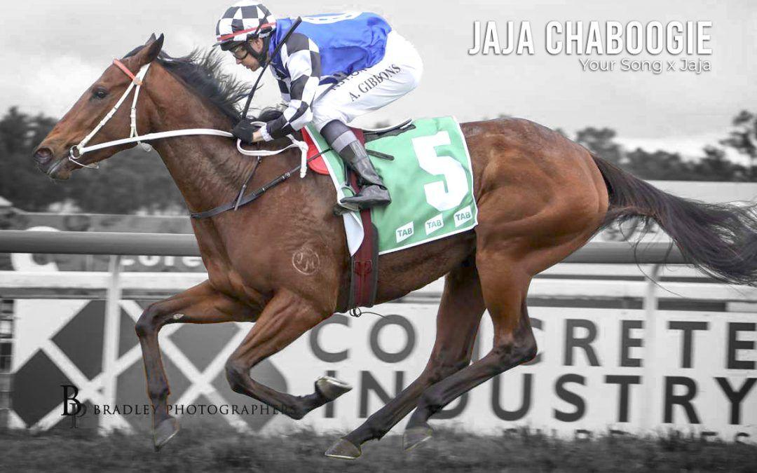 JaJa Chaboogie – Jul 13, 2020 – Tamworth