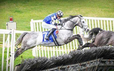 Saunter Boy on target for Warrnambool hurdle!