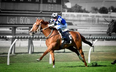 Top Prospect – Oct 17, 2020 – Doomben